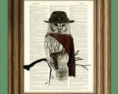 The Owl with No Name COWBOY OWL illustration beautifully upcycled dictionary page book art print