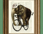 Trunk Armstrong ELEPHANT on a BIKE illustration beautifully upcycled dictionary page book art print