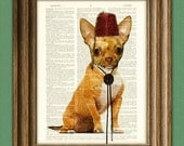Tiny Tom Teacup CHIHUAHUA dog with tassled FEZ and a bolo tie illustration beautifully upcycled dictionary page book art print