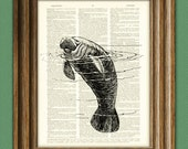 Manatee Art Print altered art on a vintage dictionary page illustration book print