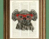 Koala Bear Smarty Pants with red glasses illustration beautifully upcycled dictionary page book art print