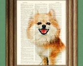 Pomeranian Dog Pom Dog art print beautifully upcycled vintage dictionary page book art print