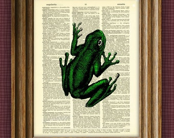 GREEN TREE FROG beautifully upcycled vintage dictionary page book art print
