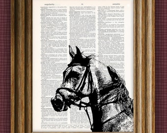 ARABIAN HORSE beautifully upcycled vintage dictionary page book art print 8.5 x 11
