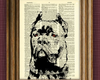 CANE CORSO dog beautifully upcycled vintage dictionary page book art print
