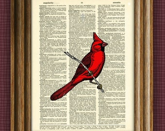 CARDINAL bird  print over an upcycled vintage dictionary page book art