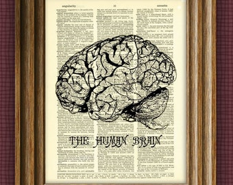 HUMAN BRAIN Art Print beautifully upcycled vintage dictionary page book art print