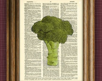 BROCCOLI beautifully upcycled dictionary page book art print