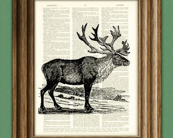 Cool CARIBOU illustration beautifully upcycled dictionary page book art print