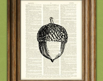 ACORN oak nut beautifully upcycled vintage dictionary page book art print