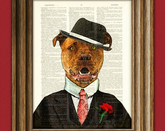 "Pitbull Art Print ""Chopper the Muscle"" Gangster Pit Bull with hat and suit illustration beautifully upcycled dictionary page book art print"