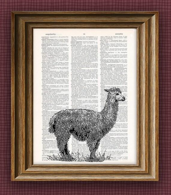 Alpaca Art Print beautifully upcycled vintage dictionary page book art print 8.5 x 11