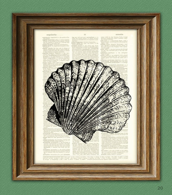 cool SCALLOP Shell beautifully upcycled dictionary page book art print