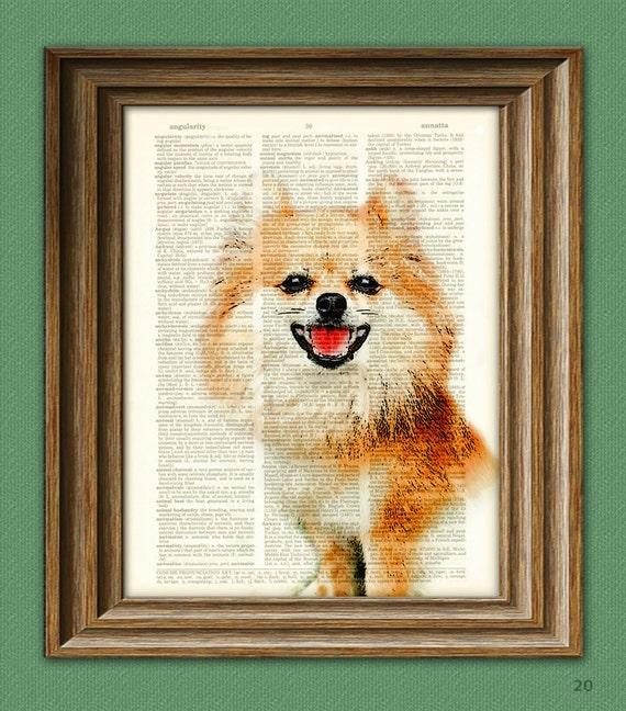Pomeranian Dog Pom Dog art print beautifully upcycled vintage dictionary page book art print