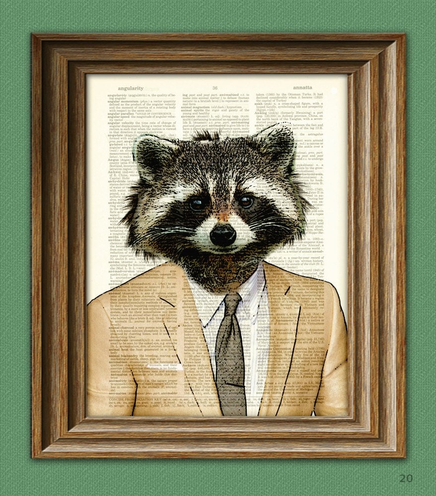 raccoon art print well suited raccoon illustration beautifully