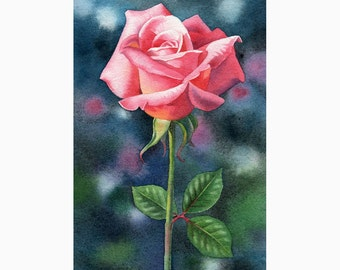 BRANDYWINE ROSE floral painting original watercolor