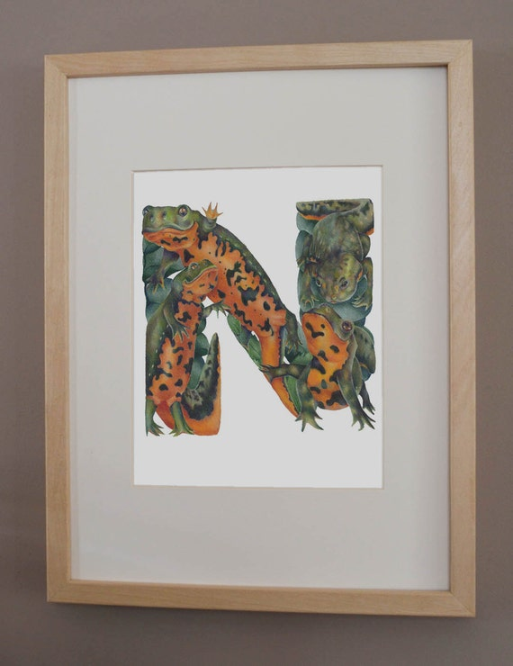 N is for Newt - PRINT