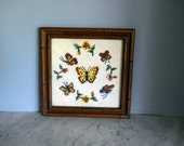 vintage BUTTERFLY  AND FLOWER Needlepoint