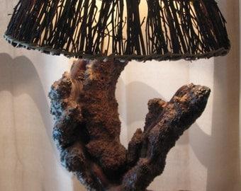 Antique Lamp Natural Tree Wood Rustic Primitive Black Burled Walnut Trunk Chocolate Grain RARE  Free Shipping