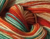 Bird of Paradise - Superwash Merino Sock Yarn