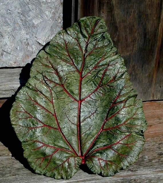 EverLasting Leaves - Concrete Leaf - Green Rhubarb Bird Bath