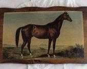 vintage HORSE plaque, equestrian, prairie, ranch, or farmhouse decor