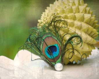 Pearl & Peacock Feather Hair Clip / Comb / Bobby Pin. Simple Classy Clip, Bridal Accessory. Preppy Girly Teen Pin, Birthday Party Fascinator