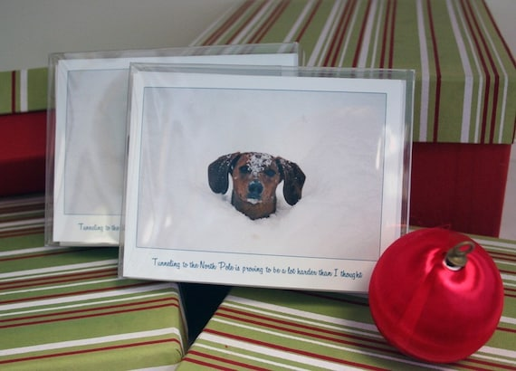 SALE Dachshund Christmas Cards featuring Ammo - Northpole