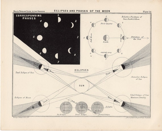 1955 eclipse and phases of the moon print original vintage print