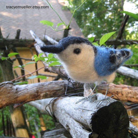 Mr. White Breasted Nuthatch, needle felted bird fiber art