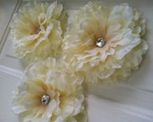 Wall Flowers - 6 Giant Cream Peony Flowers with Rhinestone Center - Wall Decor