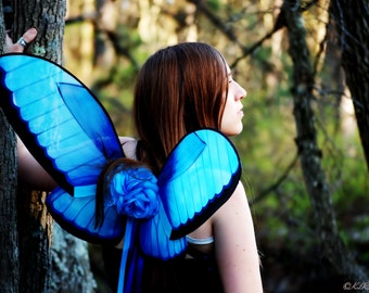 Blue Morpho Fairy Wings
