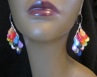 Spray of Colors  - Chandelier Earrings