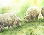 SPECIAL - Sheep Painting for Sale Watercolor 4 x 6