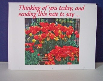 Three (3) Greeting Cards with Envelopes. Thinking of You Today ... For Any and All Occasions 5041