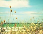 Somewhere Seaside