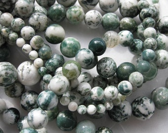 10mm Tree Agate Round Beads - 16 inch strand