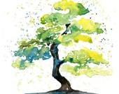 Bonsai Print from my original watercolor painting 8x10 inch