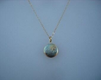 mini black bird in a moonlight tree locket necklace - 14K gold filled