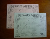 NEW   2011   Phases of the Moon Calendar (single copy)
