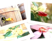 Blank Flower Note Cards