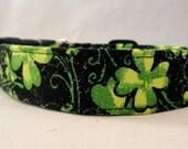 St Patricks 4 Leaf Clover with Glitter on Black Dog Collar