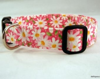 Awesome Bright Pink Daisy Spring Dog Collar