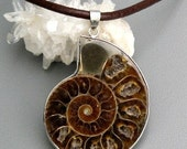 Ancient Life SALE - Ammonite Fossil Crystal Pendant from Madagascar with leather necklace