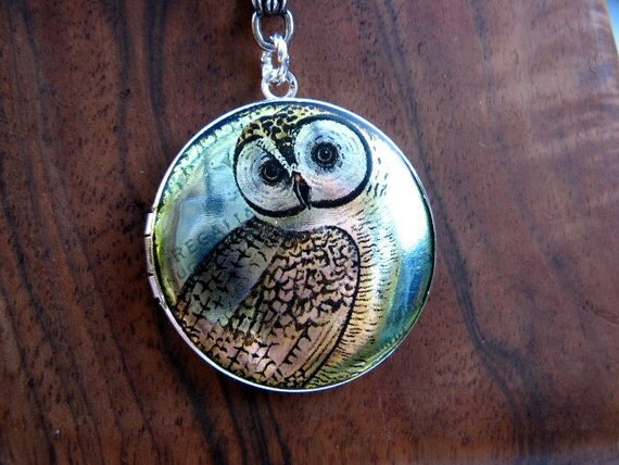 Silver Wise Owl Locket Necklace - Enamel Altered Art Image Photo Locket - Sterling Silver Ball Chain