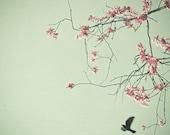 SALE Free as a Bird 5 x 5 Print