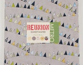 Reunion by Sweetwater for Moda Layer Cake