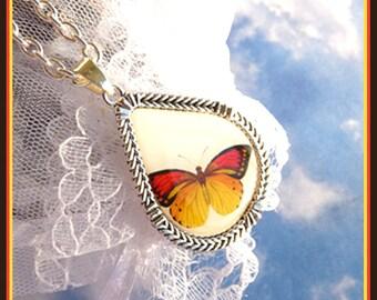 Monarch Butterfly- Necklace  U 5466