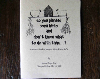 So You Planted Some Herbs and Don't Know What To Do With Them - Zine