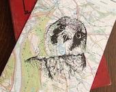 Sale Gocco Print Kestrel Map Bird Gocco Print
